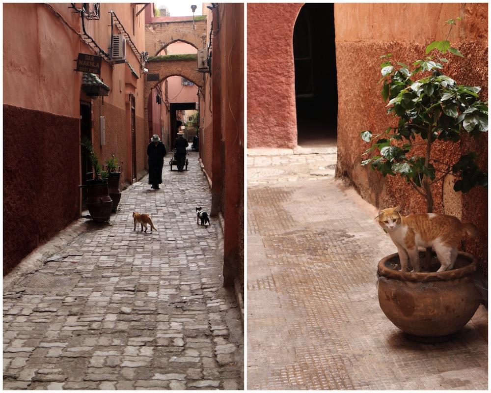 Morocco_ Marakes-002