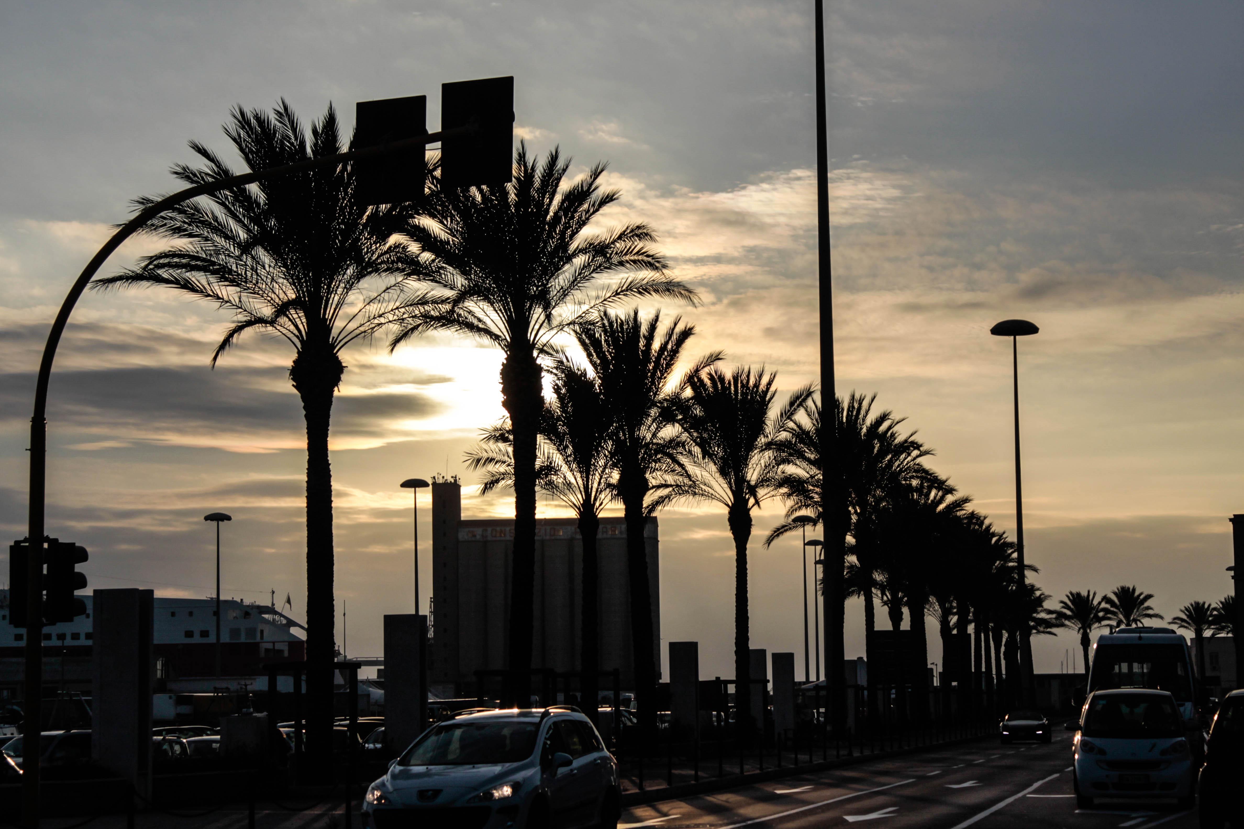 SmellofJasmine_Cagliari_sunset