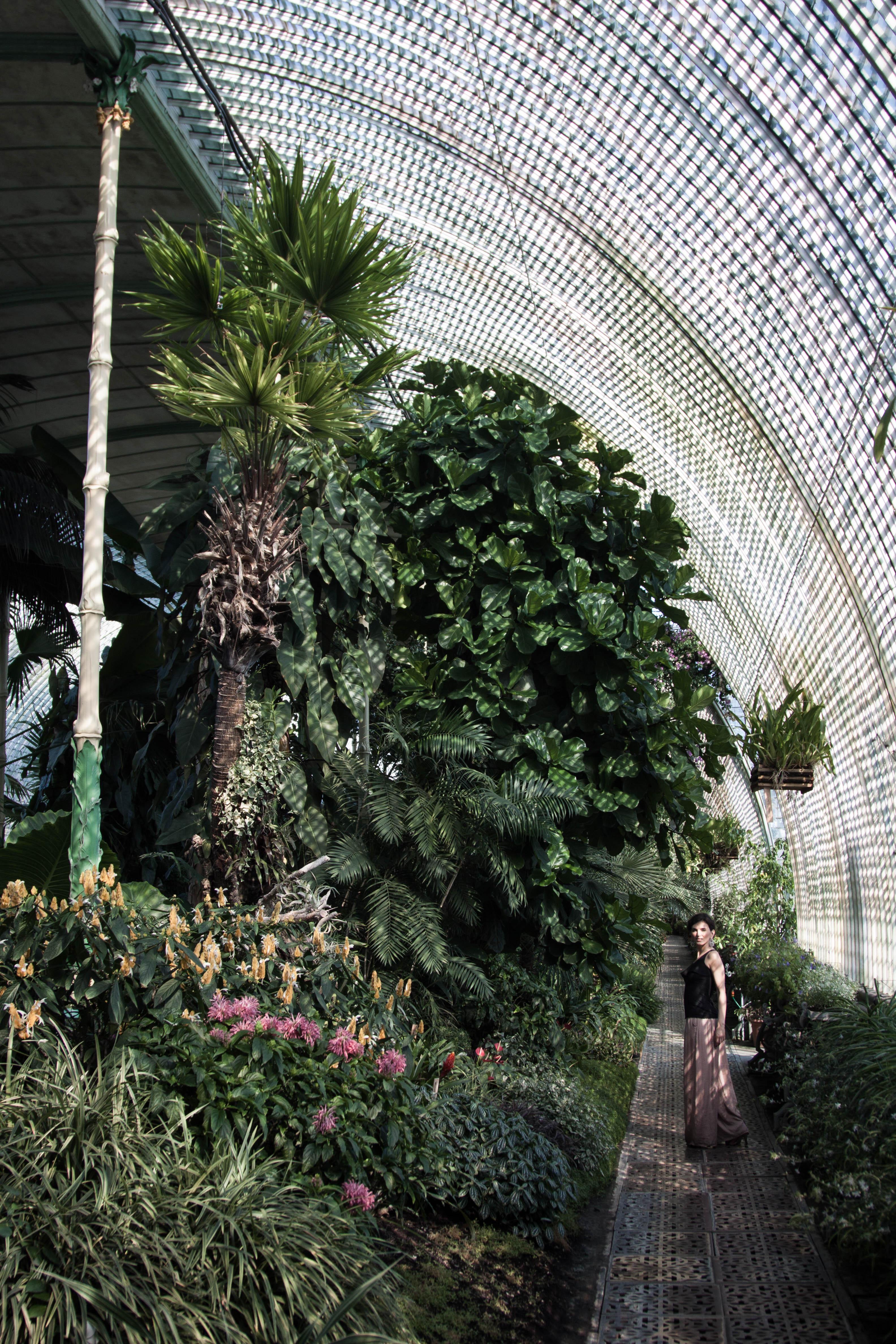 garden_velka_final