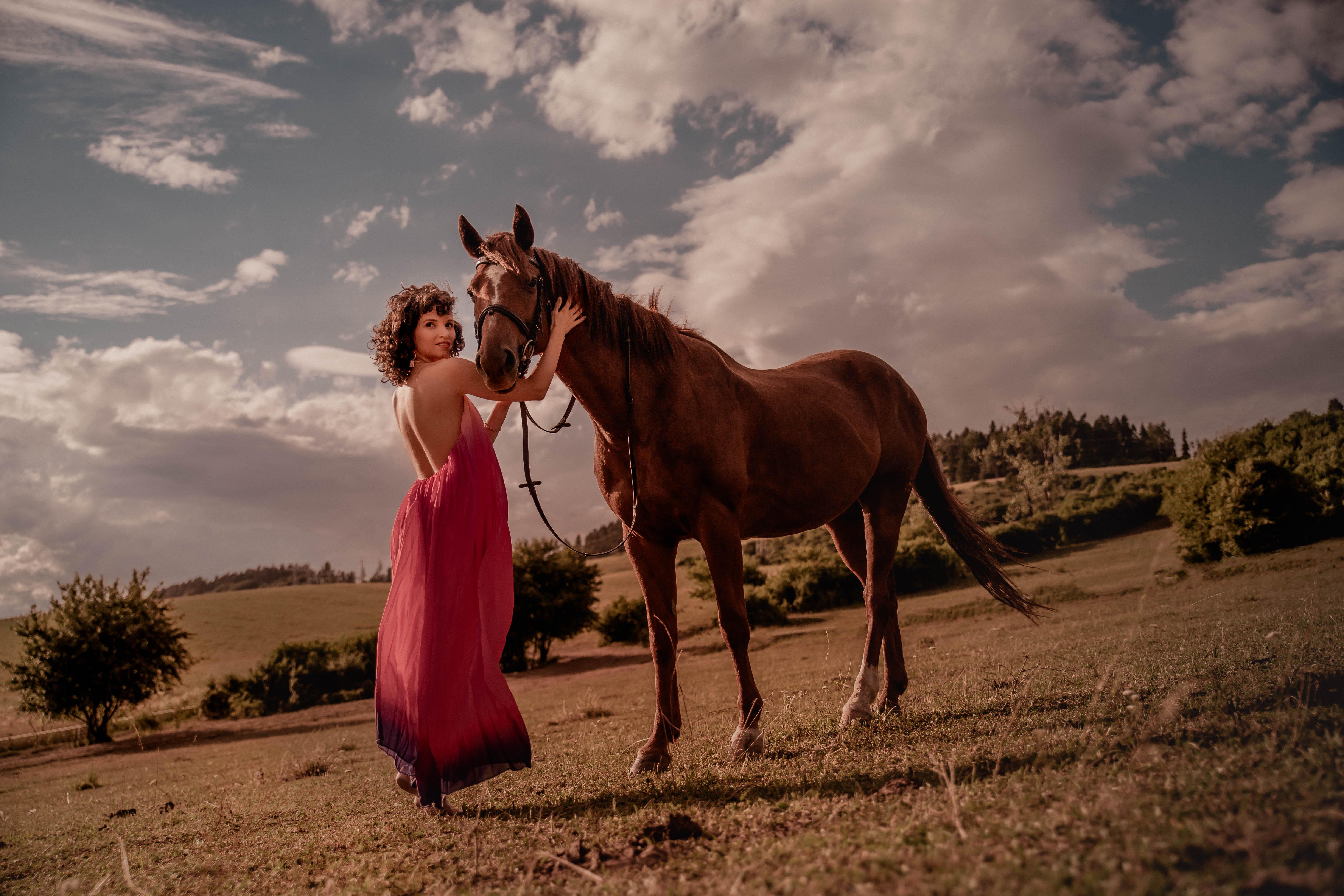 Horse editorial 4