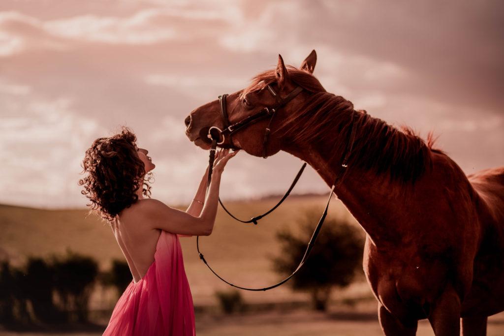 Horse editorial 2