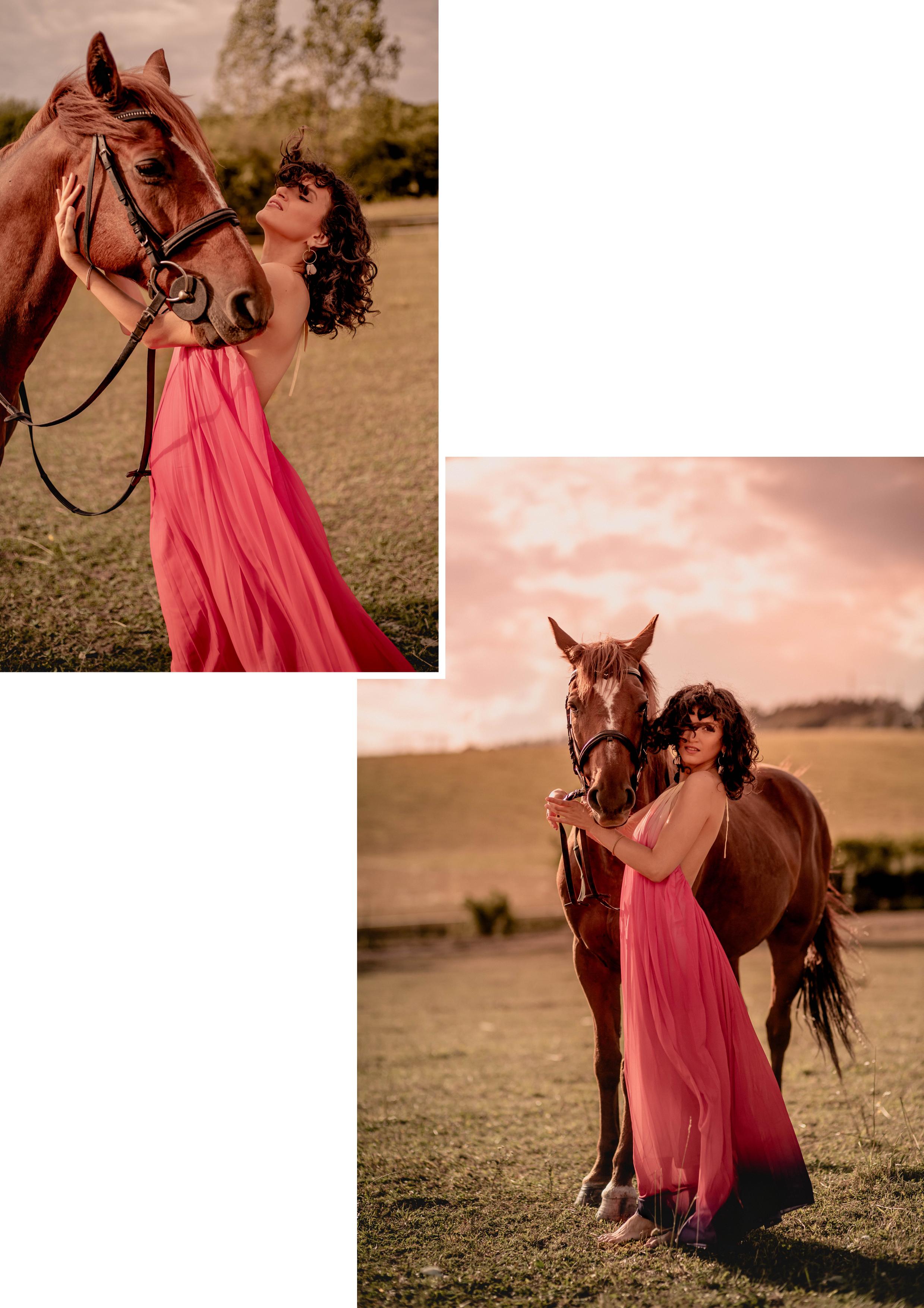 Horse editorial 3